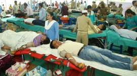 Blood Donated by 334 Devotees in Mumbai