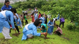 10,000 SAPLINGS PLANTED BY NIRANKARI DEVOTEES AT DINDIGARH NEAR BHIWANDI
